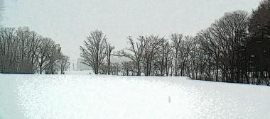 雪の真狩ブログタイトル用2.jpg